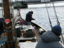 Fisketur på fjorden 8 maj 2005