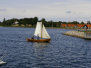TRÆF FJORDENS TRÆBÅDE 18-20 AUGUST 2006 I FREDERIKSSUND